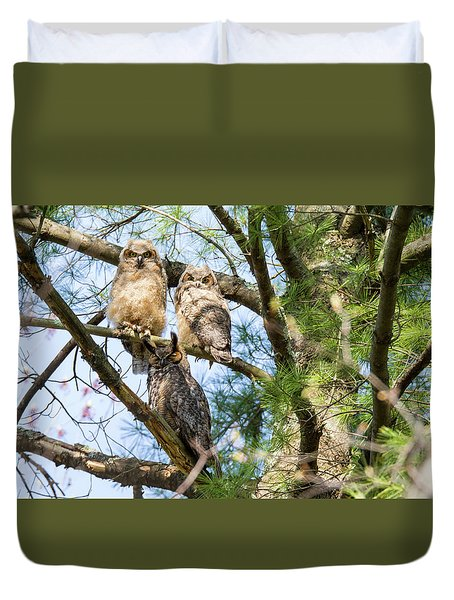 Great Horned Owl Family Duvet Cover