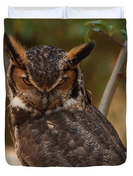 Great Horned Owl In A Tree 2 Duvet Cover by Chris Flees