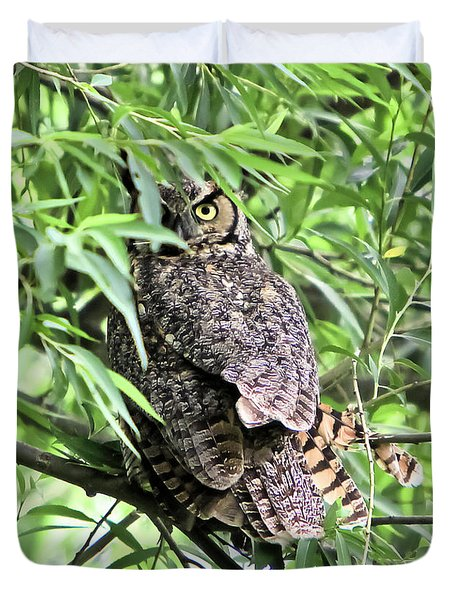 Great Horned Owl Looking At You Duvet Cover