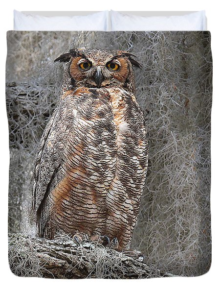 Great Horned Owl Perched Duvet Cover