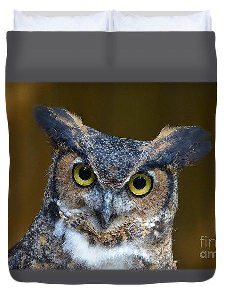Great Horned Owl Portrait Duvet Cover