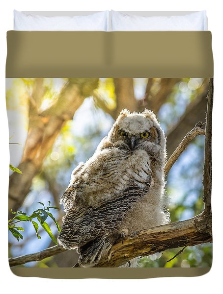 Great-horned Owlet In Spring Duvet Cover by Yeates Photography