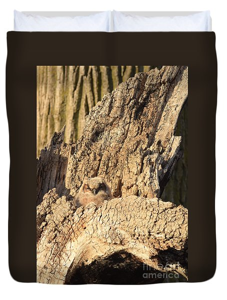 Great Horned Owlet Two Duvet Cover