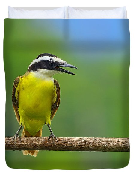 Great Kiskadee Duvet Cover