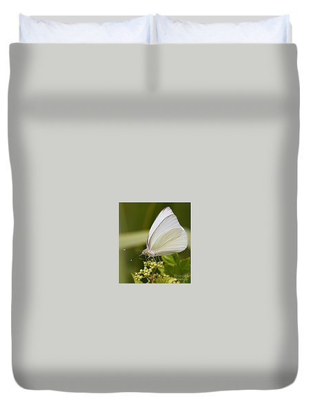Duvet Cover featuring the photograph Great Southern White Butterfly by Myrna Bradshaw