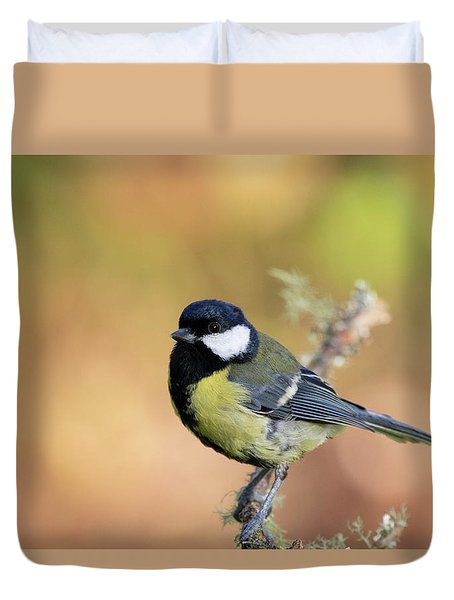 Great Tit - Parus Major Duvet Cover