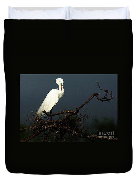 Majestic Great White Egret High Island Texas 2 Duvet Cover by Bob Christopher