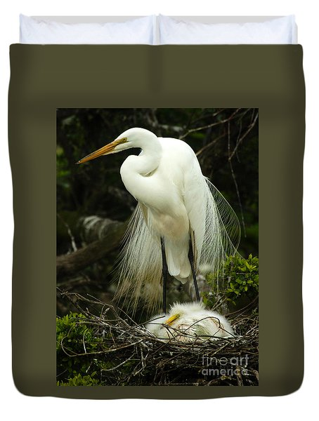 Majestic Great White Egret High Island Texas 3 Duvet Cover by Bob Christopher