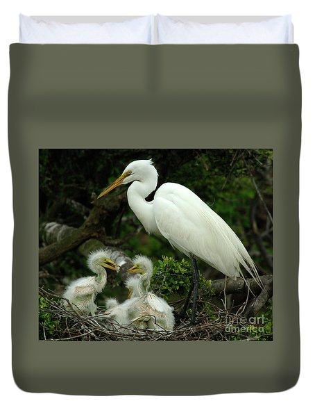 Majestic Great White Egret High Island Texas 4 Duvet Cover by Bob Christopher