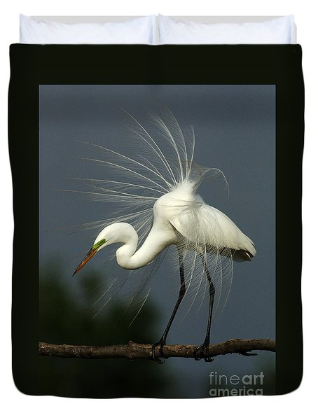 Majestic Great White Egret High Island Texas Duvet Cover by Bob Christopher