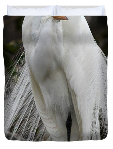 Great White Egret Windblown Duvet Cover by Sabrina L Ryan
