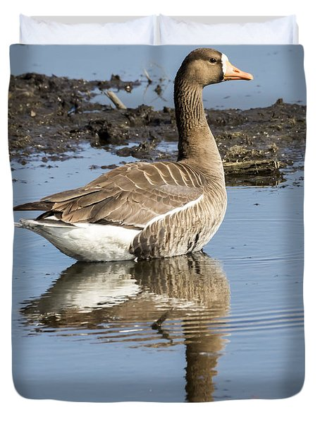 Great White Fronted Goose Duvet Cover