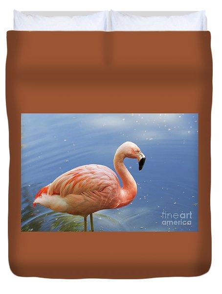 Greater Flamingo Duvet Cover by Afrodita Ellerman