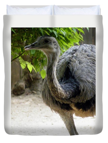 Greater Rhea Duvet Cover