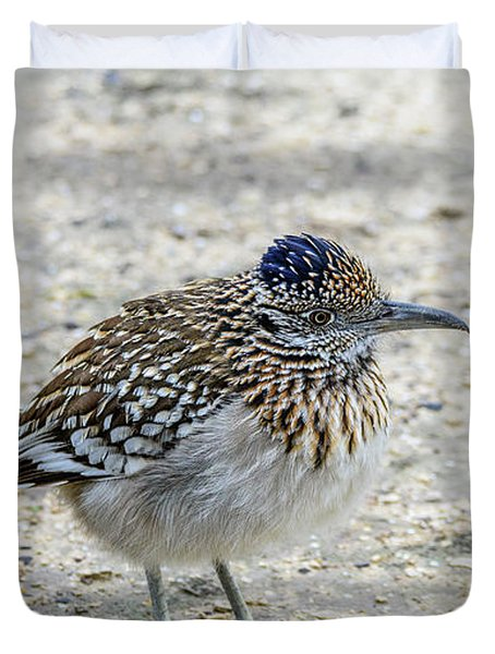Greater Roadrunner Brief Pause Duvet Cover