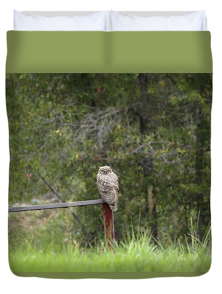 Greathornedowl2 Duvet Cover