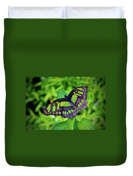 Green And Black Butterfly Duvet Cover
