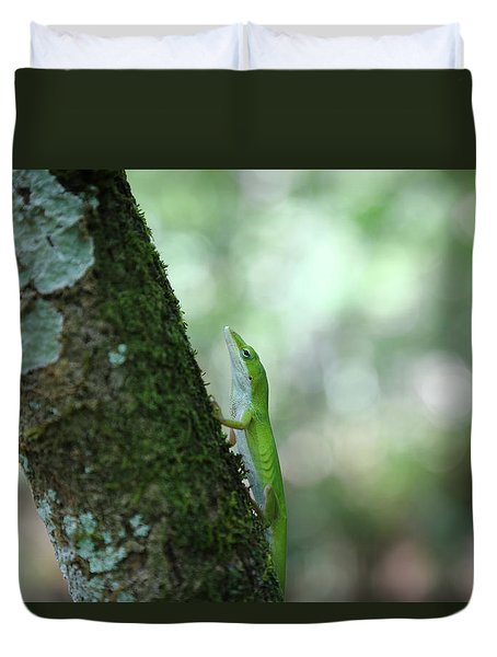Green Anole Climbing Duvet Cover by Christopher L Thomley