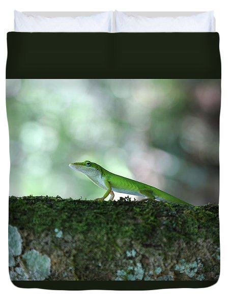 Green Anole Posing Duvet Cover by Christopher L Thomley