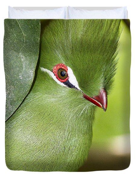 Green Turaco Bird Portrait Duvet Cover