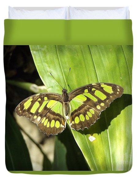 Green Butterfly Duvet Cover by Erick Schmidt