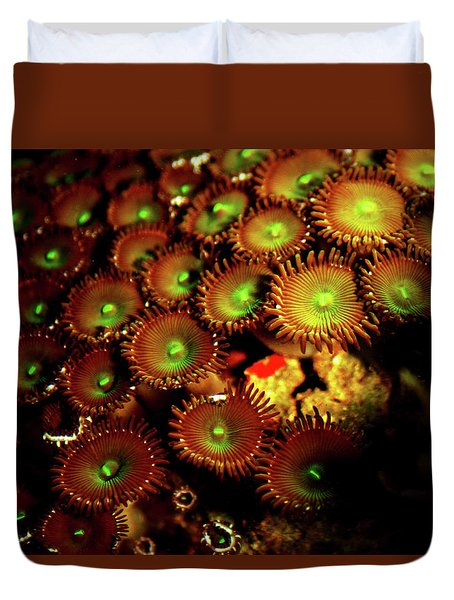 Green Button Polyps Duvet Cover