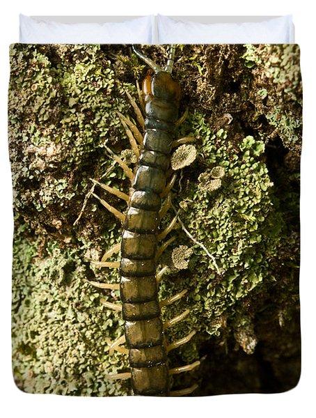 Green Centipede Duvet Cover