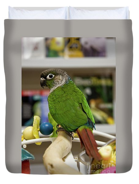 Green Cheek Conure Duvet Cover