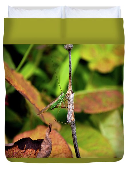 Duvet Cover featuring the photograph Green Conehead Cricket Holding Twig by Scott Lyons