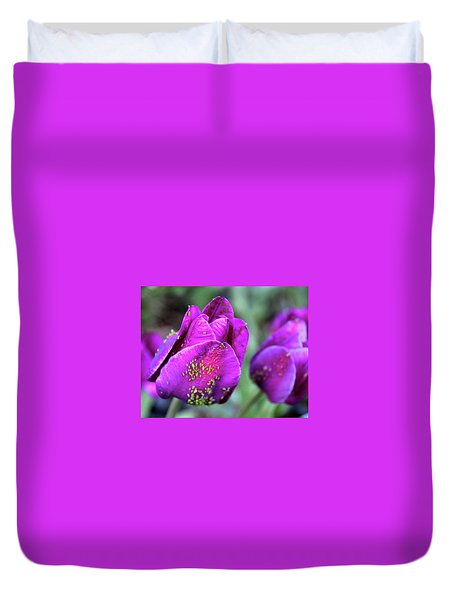 Aphids On Purple Tulips Duvet Cover