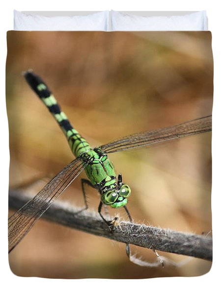Green Dragonfly On Twig Duvet Cover by Carol Groenen