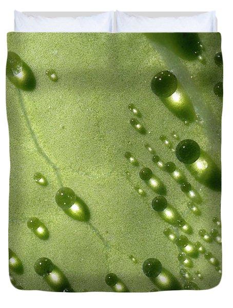Green Drops Duvet Cover