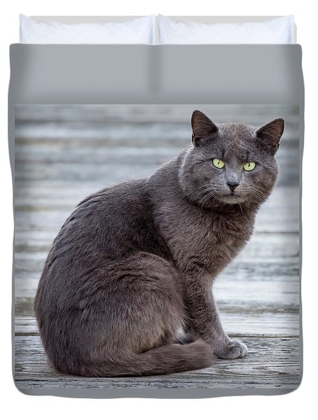Green Eye Stare Cat Square Duvet Cover by Terry DeLuco