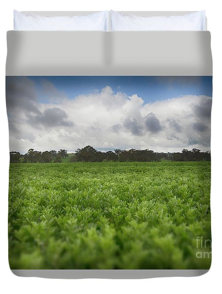 Green Fields 4 Duvet Cover by Douglas Barnard