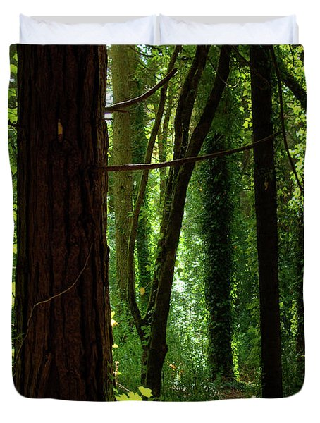 Green Forest Duvet Cover by Carlos Caetano