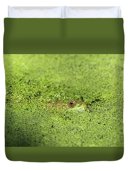 Green Frog Stony Brook New York Duvet Cover