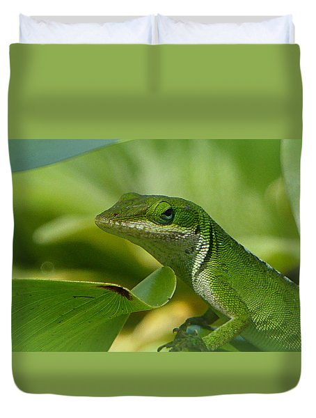 Green Gecko On Green Leaves Duvet Cover by Lori Seaman
