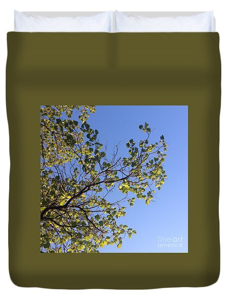 Duvet Cover featuring the photograph Green Glow by Nora Boghossian