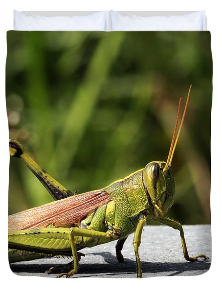 Green Grasshopper Duvet Cover