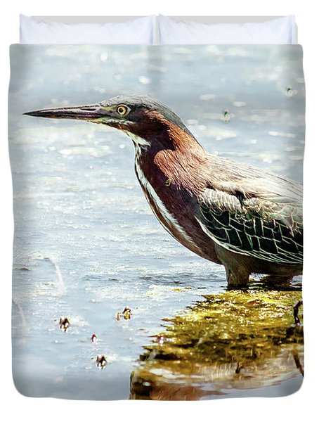 Duvet Cover featuring the photograph Green Heron Bright Day by Robert Frederick