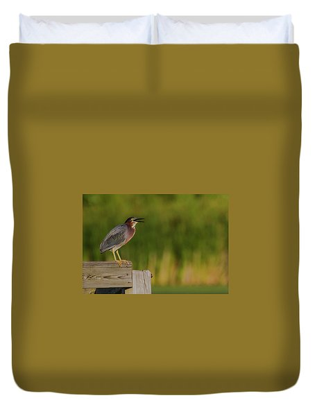 Green Heron Evening Duvet Cover