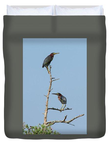 Green Heron Pair Duvet Cover