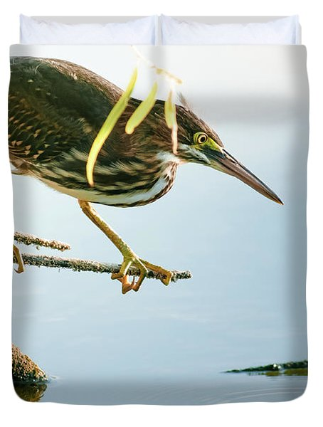Duvet Cover featuring the photograph Green Heron Sees Minnow by Robert Frederick