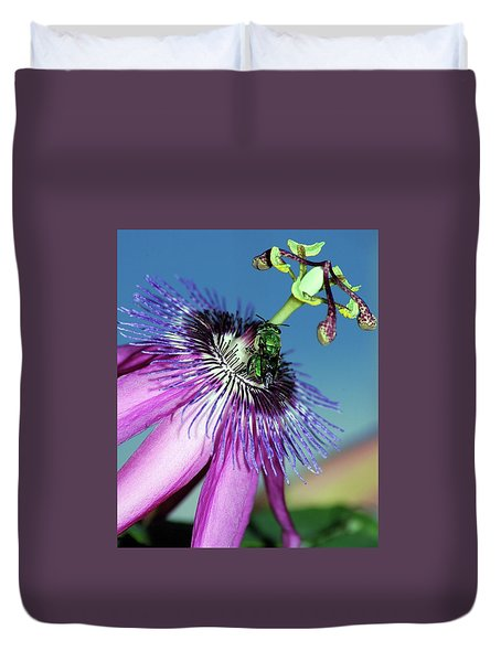 Green Hover Fly On Passion Flower Duvet Cover