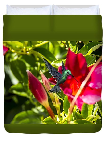 Green Hummingbird Duvet Cover