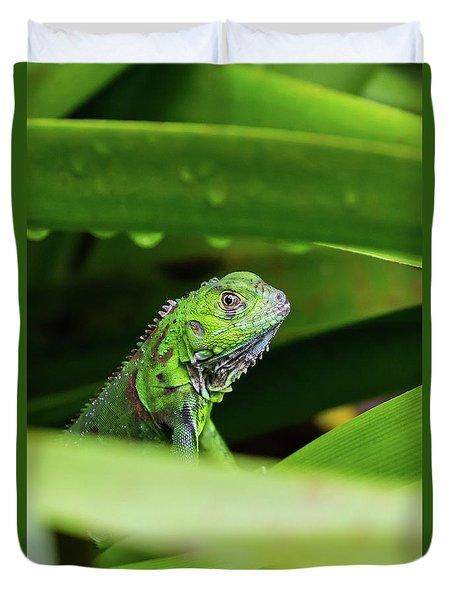 Duvet Cover featuring the photograph Green Iguana Of Costa Rica by John Haldane