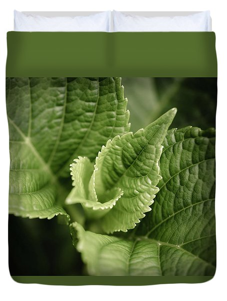 Duvet Cover featuring the photograph Green Leaves Abstract II by Marco Oliveira