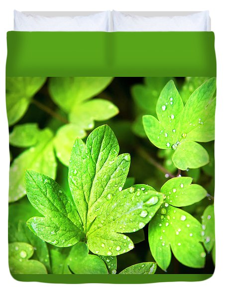 Duvet Cover featuring the photograph Green Leaves by Christina Rollo
