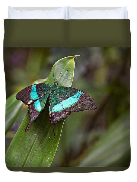 Duvet Cover featuring the photograph Green Moss Peacock Butterfly by Peter J Sucy