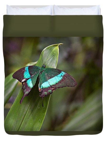 Green Moss Peacock Butterfly Duvet Cover